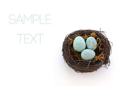 Speckled blue eggs in woven vine nest in horizontal format with room for text