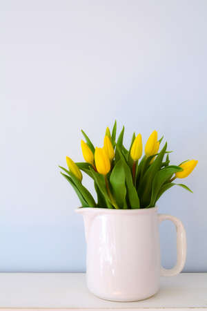 Yellow tulips in white jug on pale blue background in vertical format with room for text