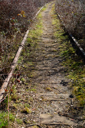 Deserted railway line in vertical format Stock Photo