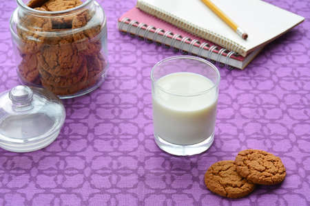 Milk and cookies for an after school snack. In horizontal format and shot in natural light. Stock Photo