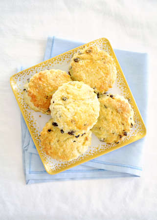Fresh baked golden English currant scones on square plate on blue and white background. Shot from overhead in vertical format.