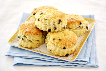 Fresh baked golden English currant scones on square plate on blue and white background.  Horizontal format with selective focus on front scones.