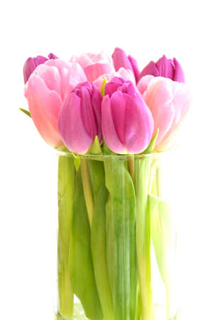 Pink and purple tulips in cylindrical glass vase in vertical format. Front view and isolated on white Reklamní fotografie
