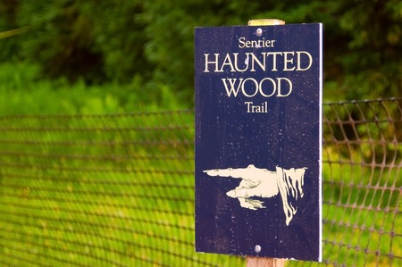 Spooky sign on a blue wood board with a skeleton finger pointing to the left.