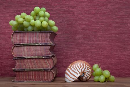 Old books and grapes, nautilus on the burgundy background.