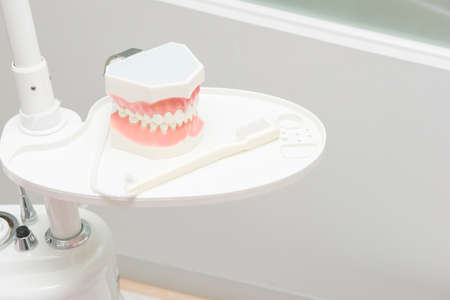 fake smile: dental study model in dental clinic table
