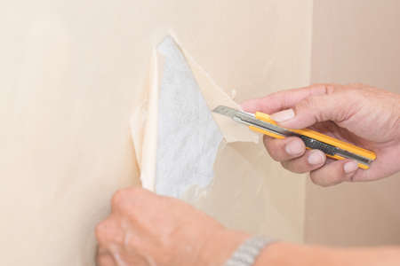 deteriorate: Removal of wallpaper. Stock Photo