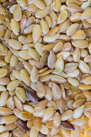 usitatissimum: Macro of linseed seeds. Linum usitatissimum.