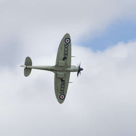 warbirds: Yeovilton, UK - 11th July 2015: A vintage Spifire fighter in flight at Yeovilton Air Day.