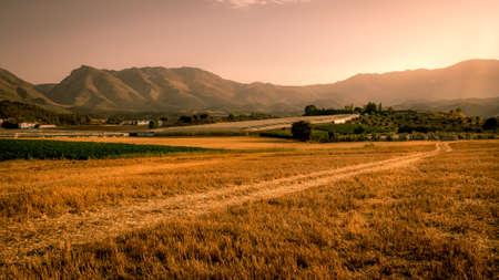 Een beauitiful landschap weergave van een gouden korenveld in Andaluicia Zuid-Spanje Stockfoto