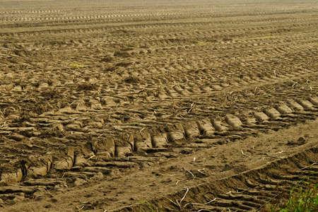 husbandry: Tractor tracks on husbandry