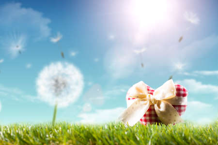 fabric heart in a spring scene Stock Photo