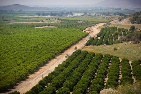 farmland in the sierra nevada foothills