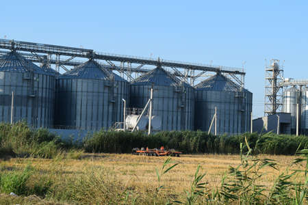 grain storage: Plant for storage and processing of grain