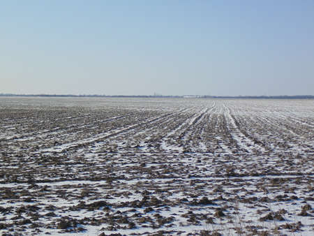 farmlands: The plowed field. Spring processing of farmlands Stock Photo