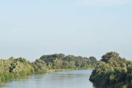 kuban: River Kuban. Water smooth surface and coastal woods.