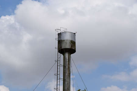 extremadura: Stork on a roof of a water tower. Stork nest.