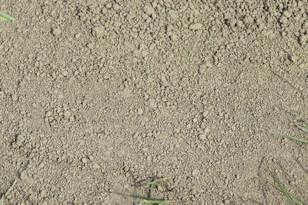 마른 땅에서 배경입니다. 비포장 도로에 흙. 스톡 콘텐츠