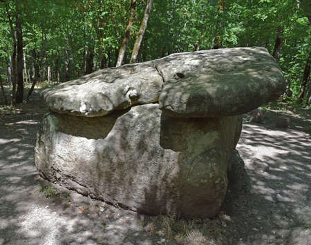 kuban: Big Shapsug dolmen. A megalytic construction in the woods of Kuban. Stock Photo