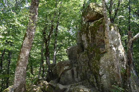 kuban: Devils Finger. The rock damaged by explosion in the woods of Kuban.