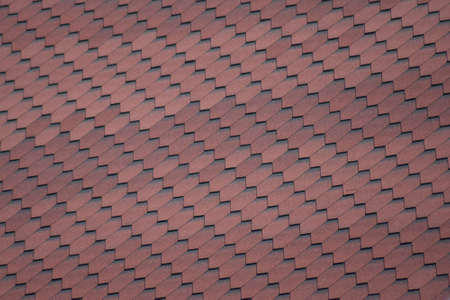 trussing: Decorative metal tile on a roof. Types of a roof of roofs.