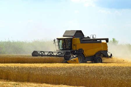 Kombain sammelt sich auf der Weizenernte. Landwirtschaftliche Maschinen auf dem Feld. Getreideernte. Standard-Bild - 53741648