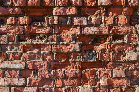 precipitación: Destruido por el tiempo y la pared de ladrillo precipitación. El fondo de la pared de ladrillo antiguo de la vendimia