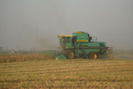 combines: Soy harvesting by combines in the field. Agricultural machinery in operation.