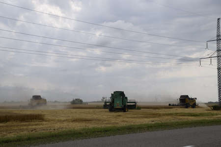 winnower: Russia, Temryuk - 01 July 2016: Kombain collects on the wheat crop. Agricultural machinery in the field. Grain harvest.