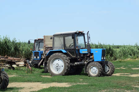 farm duties: Russia, Temryuk - 15 July 2015: Tractor, standing in a row. Agricultural machinery. Parking of agricultural machinery. Editorial
