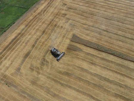 agricultural machinery: Harvesting wheat harvester. Agricultural machinery in operation.
