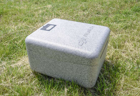 phantom: Russia, Poltavskaya village - May 13, 2016: Case with quadrocopters DJI Phantom 4. Closed box on the grass. A box for transporting quadrocopters. Editorial
