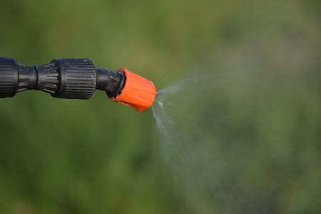 Spraying herbicide from the nozzle of the sprayer manual. Devices for processing plants in the garden. Archivio Fotografico
