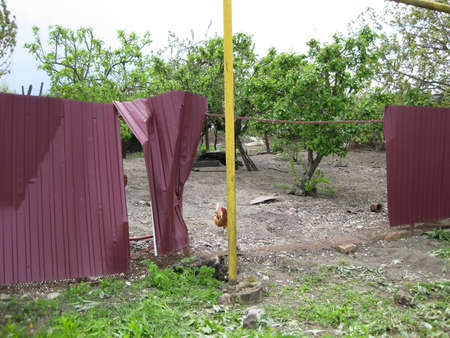 chewed: Mashed sheet metal profile fence. Mashed car corrugated metal sheets.