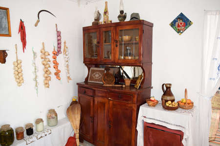 blanks: Interior Cossack home. Kitchenette Pets blanks