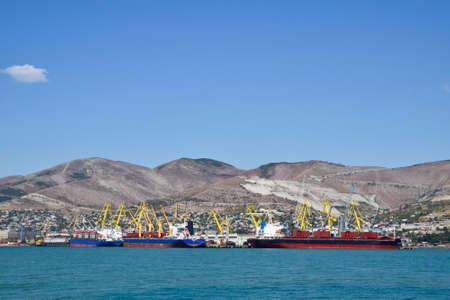 seaports: international seaports. Cargo port with port cranes. Sea bay and mountainous coast.