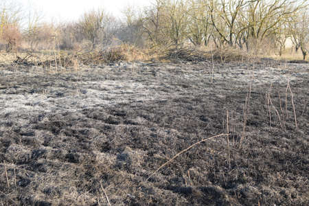 leidenschaft: Burning dry grass and reeds. Cleaning the fields and ditches of the thickets of dry grass.