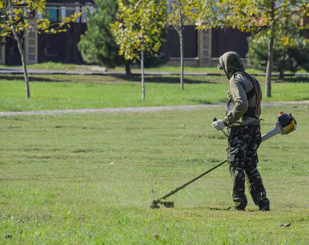 grass cutting: Worker mowing the lawn. Mowing grass trimmer.