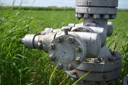 flange: Equipment of an oil well. Shutoff valves and service equipment. The plug at the flange.