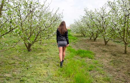 Schöne feenhafte junge Mädchen in einem blühenden Pflaumengarten. Ein Mädchen, das in einen blühenden Garten geht. Rückansicht.
