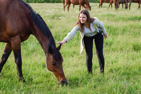 The girl is stroking the horse. Girl with horses in the pasture