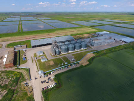 Grain terminal. Plant for the drying and storage of grain. Rice plant in the middle of fields. Top view. Stock Photo