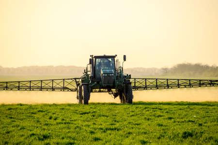 El tractor con las ruedas altas está haciendo el fertilizante en el trigo joven. El uso de productos químicos pulverizados finamente dispersados. Tractor en el fondo de la puesta del sol.