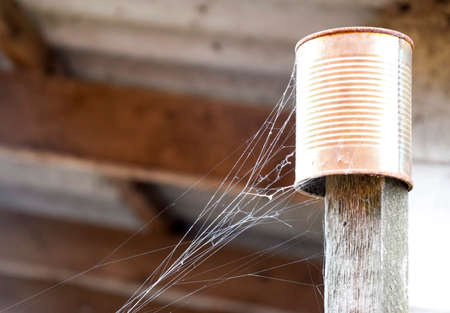 Web on an old can on a stick. A sleight of a spiders net Stock Photo