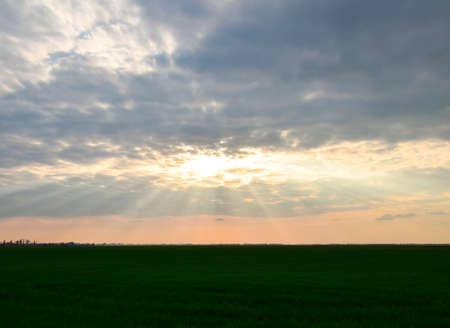 Sun rays breaking through cumulus clouds. Heavenly landscape.