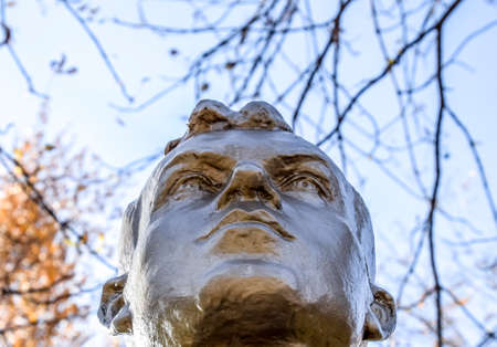 The face of the stone man. Concrete soldier bust covered with paint.