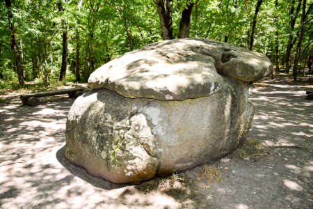 Big Shapsug dolmen. A megalytic construction in the woods of Kuban. Stock Photo