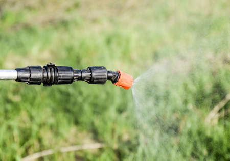 Spraying herbicide from the nozzle of the sprayer manual. Devices for processing plants in the garden. Foto de archivo