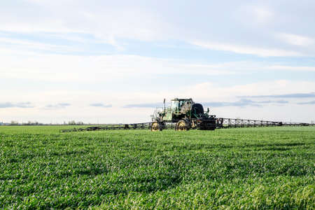 Tractor with high wheels is making fertilizer on young wheat. The use of finely dispersed spray chemicals. Tractor with a spray device for finely dispersed fertilizer. Tractor on sunset background.