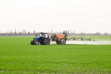 Tractor with high wheels is making fertilizer on young wheat. The use of finely dispersed spray chemicals. Tractor with a spray device for finely dispersed fertilizer. Stock Photo